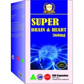 TPBVSK: Giúp tăng cường lưu thông máu lên Não chống hoa mắt chóng mặt ù tai đau nhức đầu